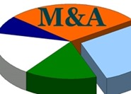 M&A: Biggest slice, or rest of the pie?