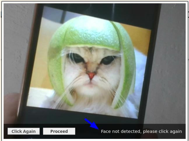 Cat does not have a candidate face, says AI